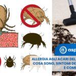 Allergia agli acari: cosa sono e come eliminarli