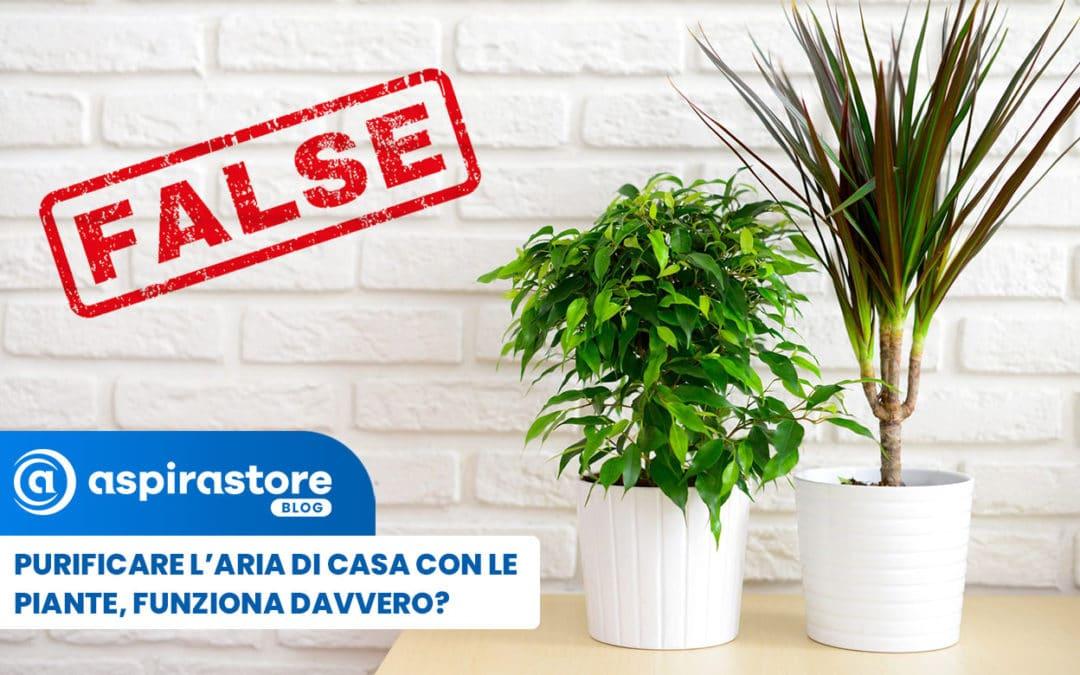 Depurare l'aria di casa con le piante, funziona davvero?